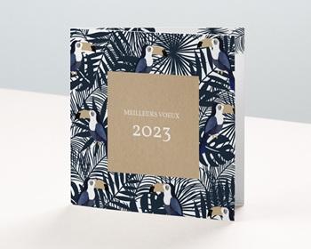Carte de Voeux Entreprise 2021 Toucans