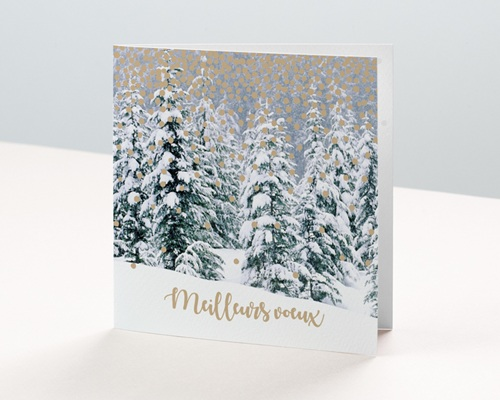 Carte de Voeux Entreprise Forêt enchantée