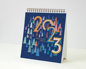 Calendrier entreprise 2022 Photos, Multipages, Sapins Colorés & Rennes Bleus, 16 x 18 cm
